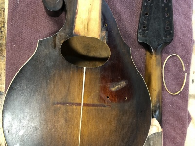 Mandolin Restoration - During Repair
